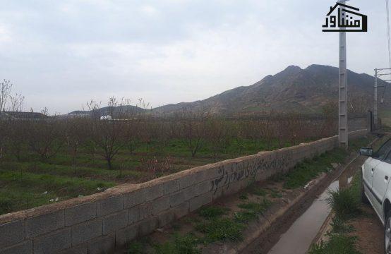 باغ یوسف اباد ملاردباغ یوسف اباد ملارد